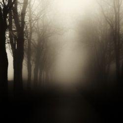 ΕΡΧΟΜΑΙ ΑΠΟ ΤΟΝ ΑΛΛΟ ΚΟΣΜΟ…Η ιστορία που ακολουθεί πρόκειται για ένα αληθινό περιστατικό…