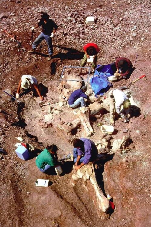 Γίγαντες στη γη πριν 13000 χρονια?